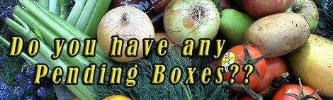Grateful Plains Produce Box