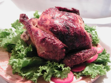 Organic Chicken at Grateful Plains Organics