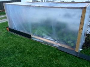 A coldframe protects fragile plants like basil and eggplant from the cooler nights in a transition time called 'hardening off' where they get used to their environment prior to being planted in the fields.